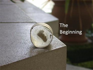 Moth The Beginning